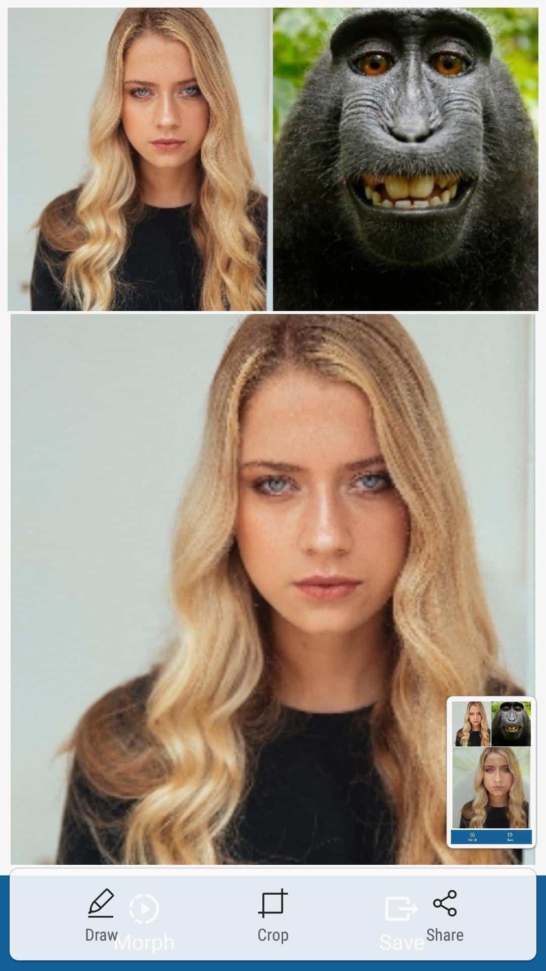 Face-Morph